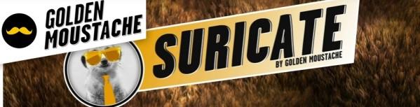 Suricate.jpg